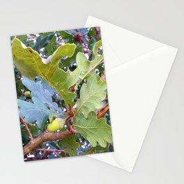Acorn Stationery Cards