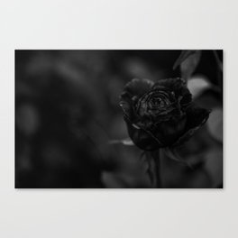 And This To Shall Pass Canvas Print