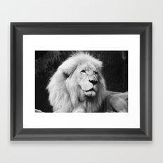 LIONS IN VEGAS Framed Art Print