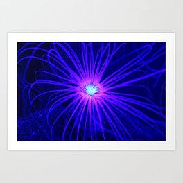 Anemone Under UV Light Art Print