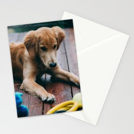 Harvey Stationery Cards