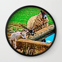 silence of the lambs Wall Clocks featuring Thirsty Lambs   by Scenic View Photography