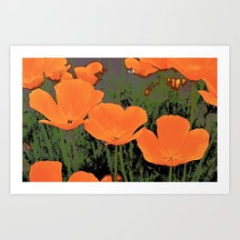 Poppy 23 Art Print