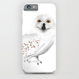 Harry Potter's Hedwig owl iPhone Case