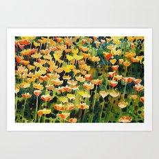 California Popies Art Print