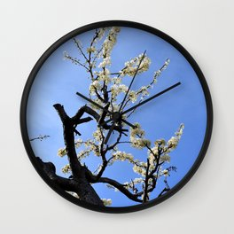Crooked White Blossoms Wall Clock