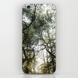 Among the Trees iPhone Skin