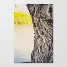 Look to the water Canvas Print