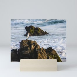 naturaleza Mini Art Print