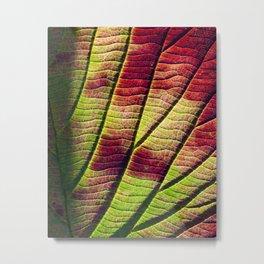 leaf detail Metal Print