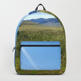 Cabin Creek Meadow Backpack