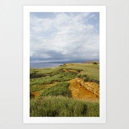 Big Island. Art Print