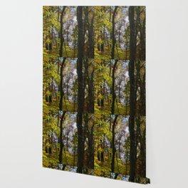 Bench Daze Wallpaper