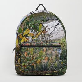 Winding River in Autumn Backpack