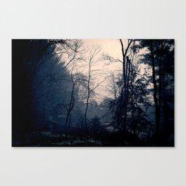A Foggy Day Canvas Print