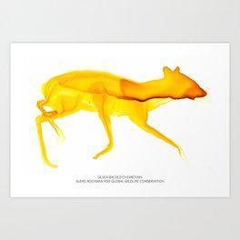 Silver-backed Chevrotain Art Print