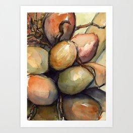 Tropical Palm Tree Coconuts Art Print