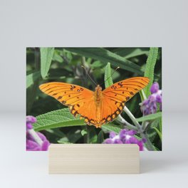 A Gulf Fritillary Shows Wear and Tear Mini Art Print