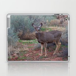 Zion Deer Laptop & iPad Skin