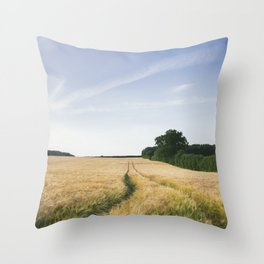 Evening light over barley field and track. West Lexham, Norfolk, UK. Throw Pillow