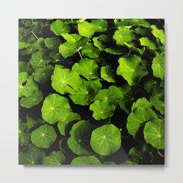 green leafs VIII Metal Print