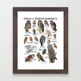 Owls of North America Framed Art Print