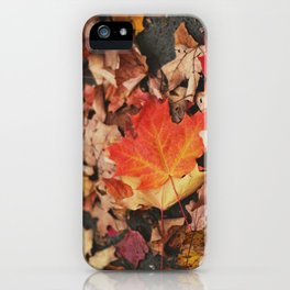 crimson leaves iPhone Case