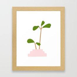 Fiddle Leaf Fig Tree Plant Framed Art Print
