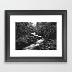 Vintgar Gorge, Bled, Slovenia. Framed Art Print