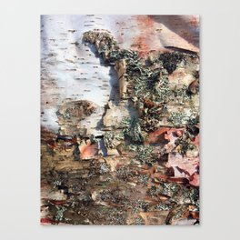 Birch Art Canvas Print