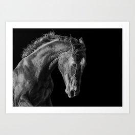 Fiery Horse Art Print