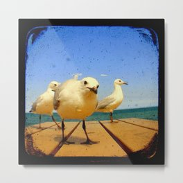 Seagulls - number 4 from set of 4 Metal Print