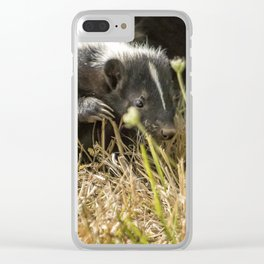 Release of a Young Skunk Clear iPhone Case