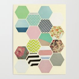 Florals and Stripes Poster