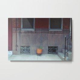 an orange pot outside Metal Print