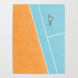 Tennis Court Colors  Poster