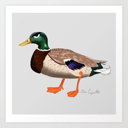 Angry duck / Le canard fôché Art Print
