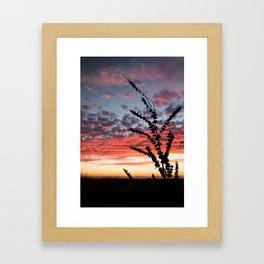 Colorful California Sunset Framed Art Print