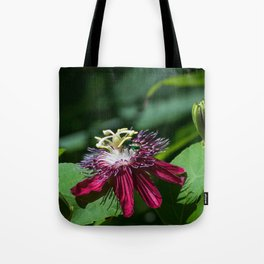 A Surprise Visitor Tote Bag