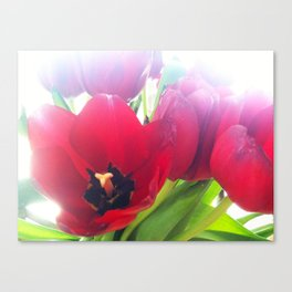 Two Lips Canvas Print