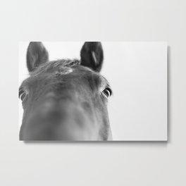 Bay Face I Metal Print