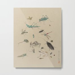 Vintage Japanese Frog and Insect Print Metal Print