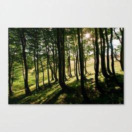 Annaberg, Austrian Alps Canvas Print