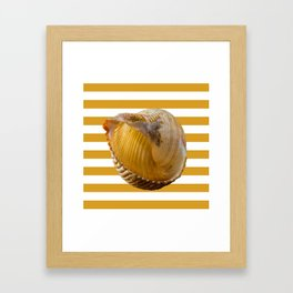 A Sea Shell with Nautical Stripes in Butterscotch and White Framed Art Print