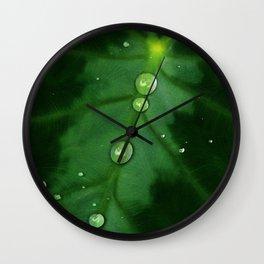 Colocasia Drops Wall Clock