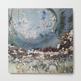 Natural Beauty . Rocks Seaweed Water Shells Metal Print