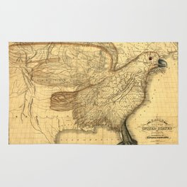 The eagle map of the United States, 1832 Rug