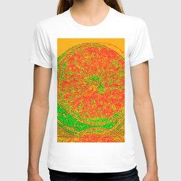 Fruity Summer Daze T-shirt