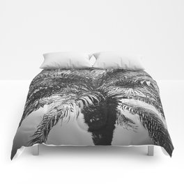 Palm Dreams Comforters