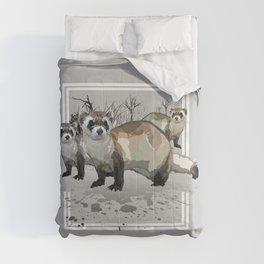 Ferrets Comforters
